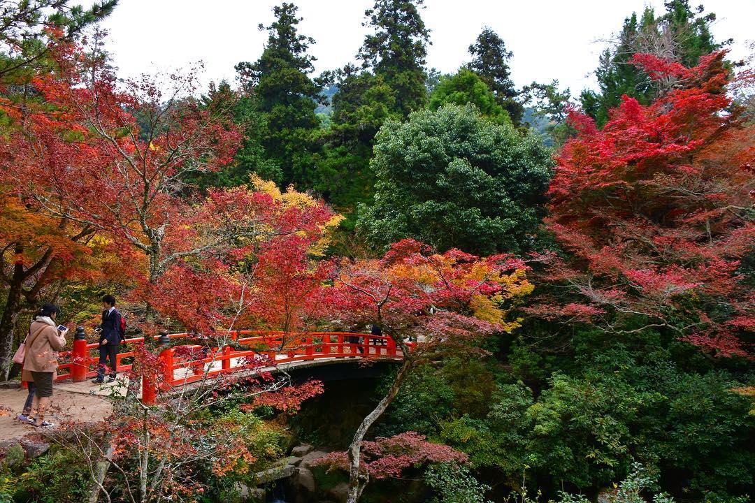 Autumn Japan 2019 buttsuji