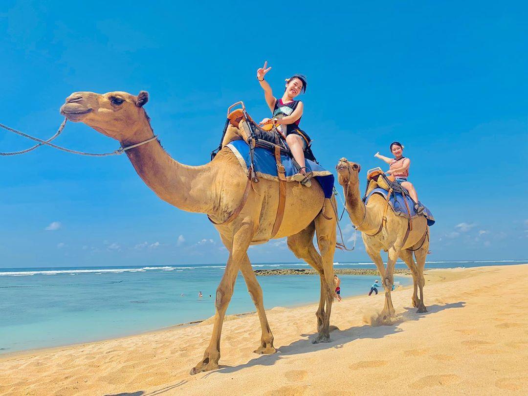 bali luxury hotels - hilton bali resort camel ride