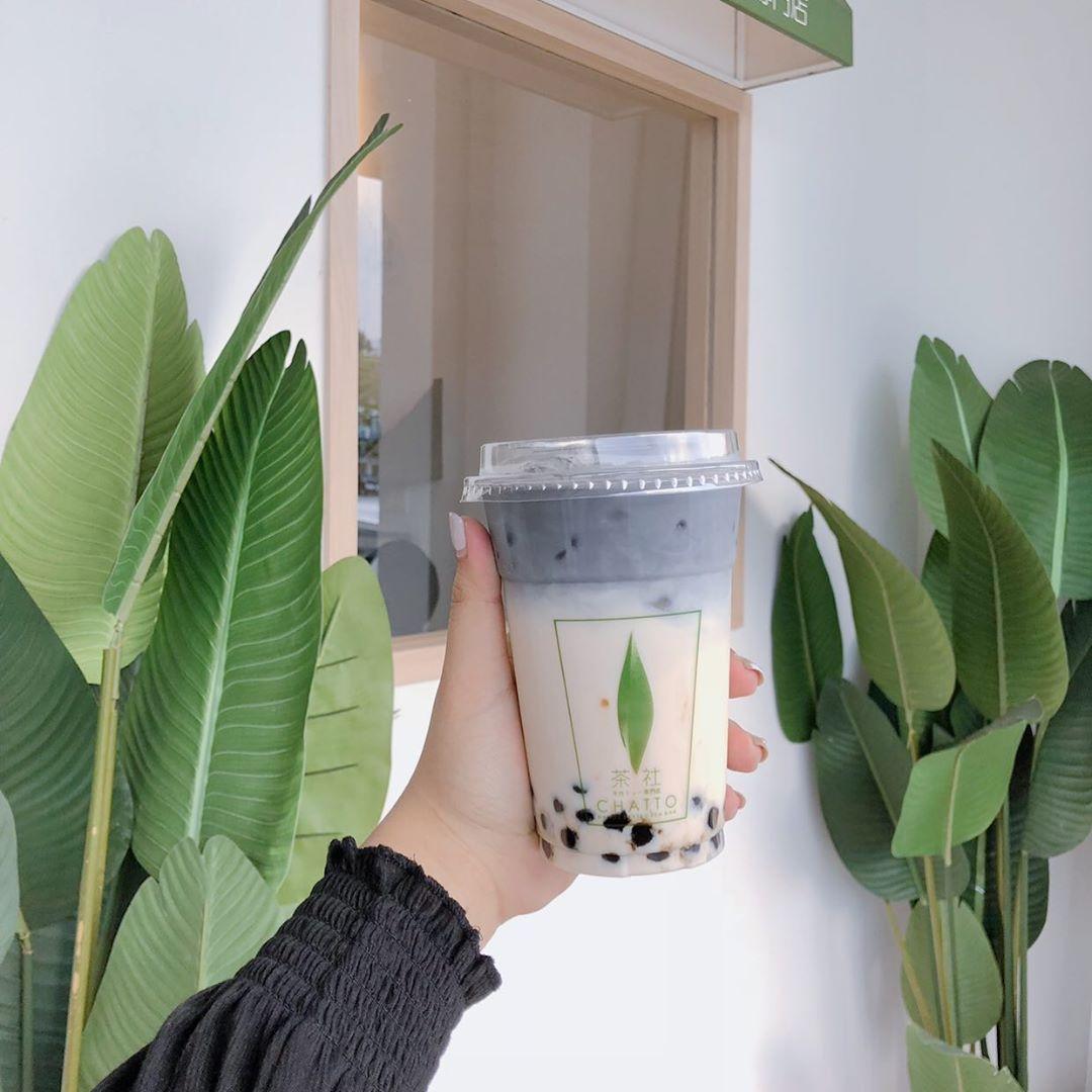 bubble tea cafe in jb - chatto tea charcoal pearl organic oolong milk tea