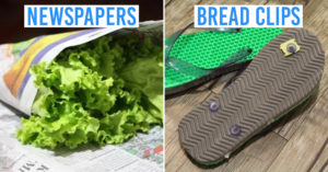 Amusing Eco-Friendly Hacks Singapore
