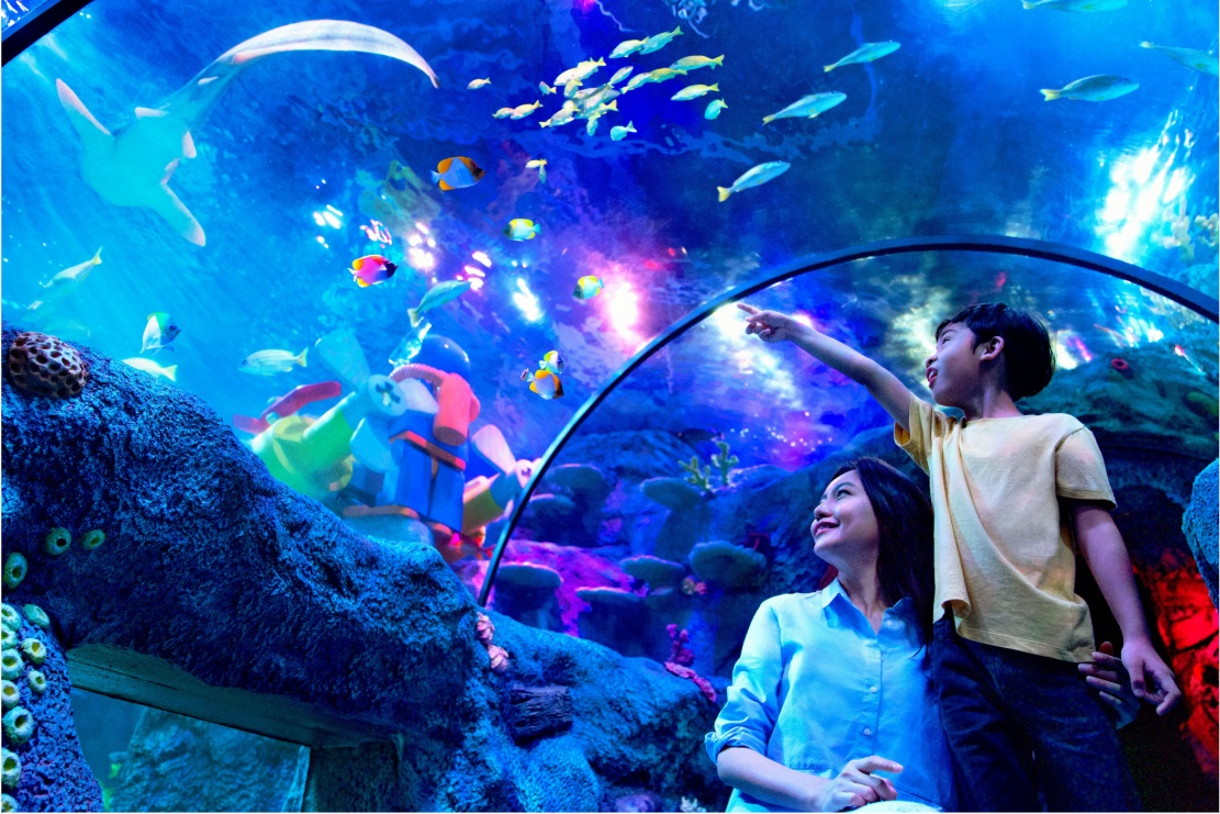 [REVISED] Legoland M'sia Has A New Aquarium, VR Roller Coaster & Pirate-Themed Rooms For School Break Staycays sea life