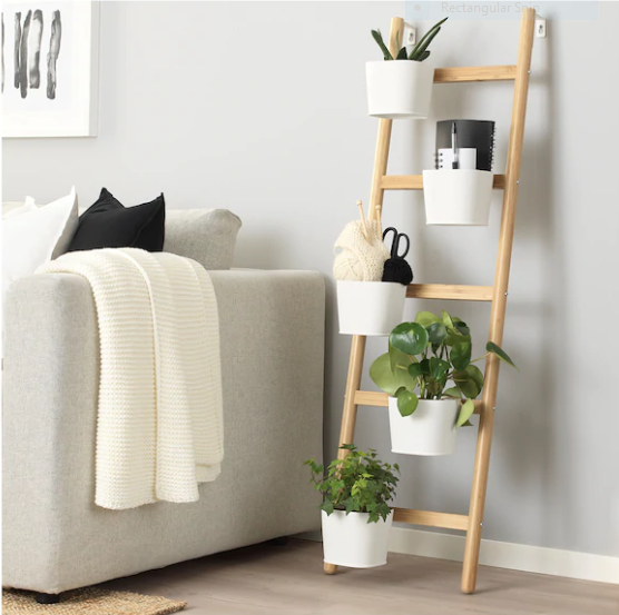 Smart Storage Plant Stand