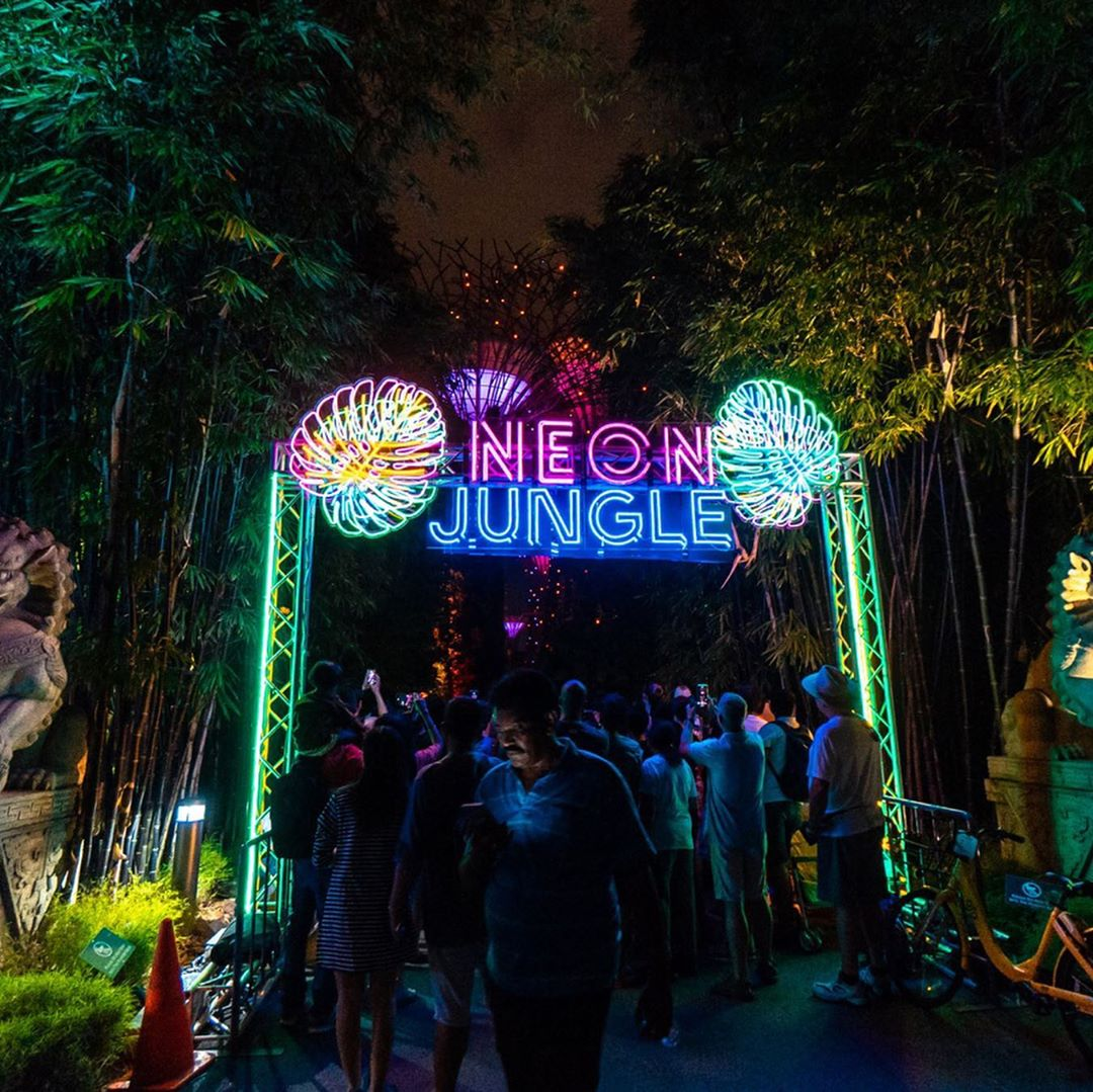 things to do october 2019 neon jungle