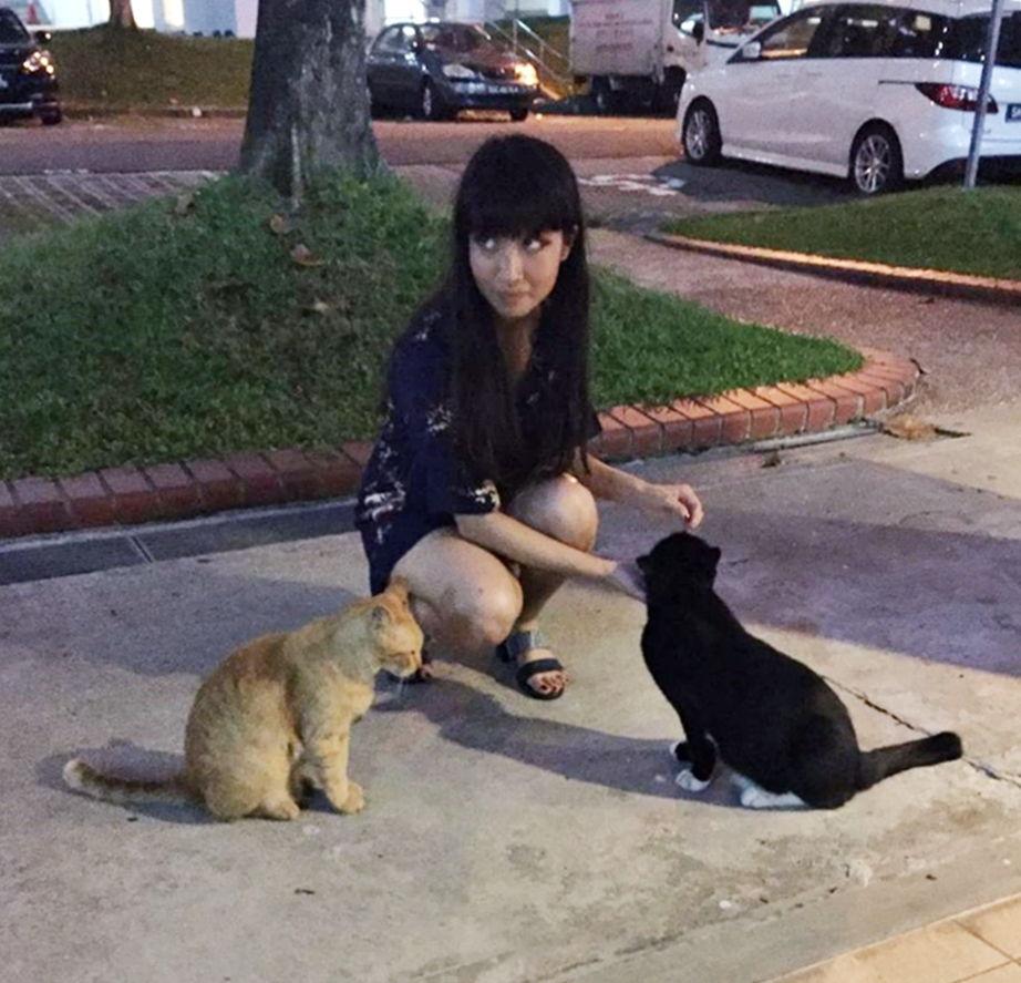 Cat lover Singapore