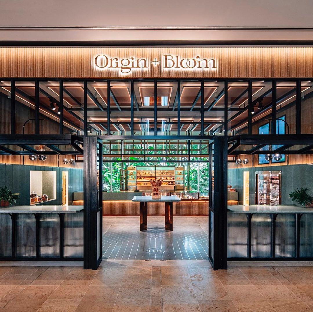 Origin + Bloom