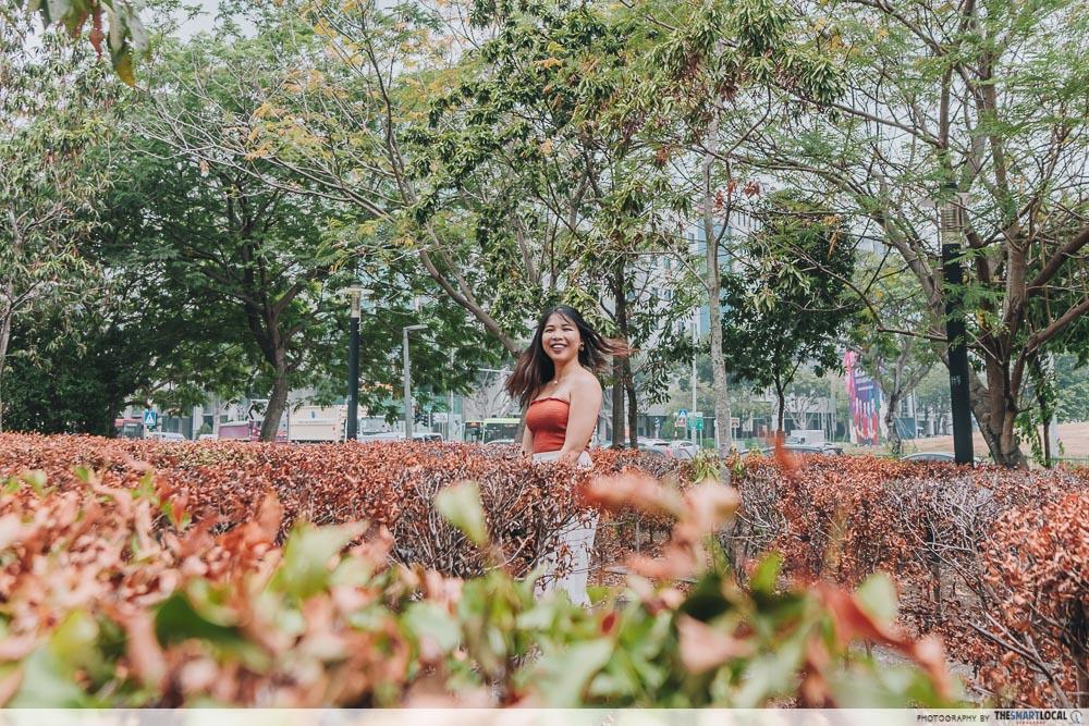 Tampines Instawalk Maze Garden
