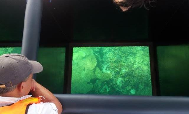 kota kinabalu resorts and hotels - glass bottom boat cruise on mamutik island