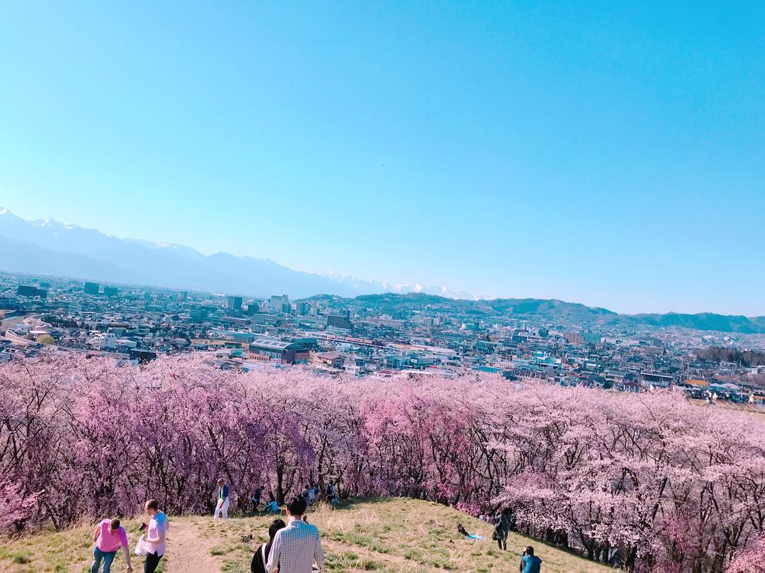 mountains tokyo hike cherry blossoms