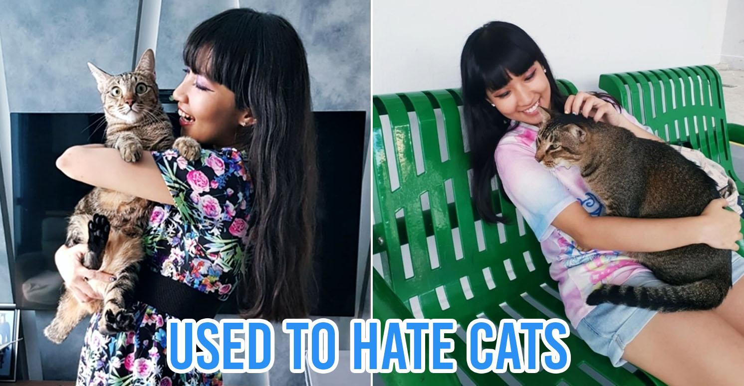 Cat lady Singapore