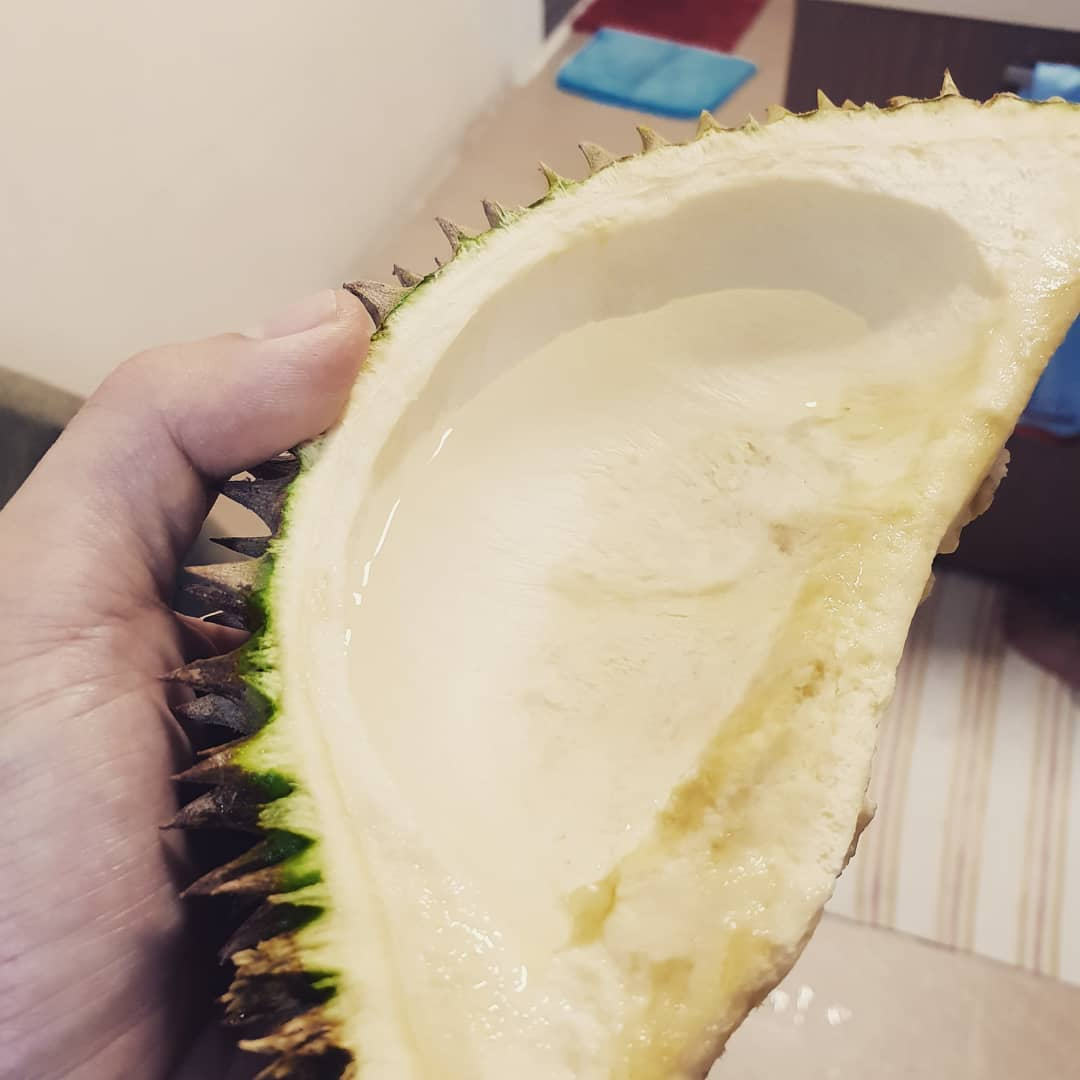 durian shell