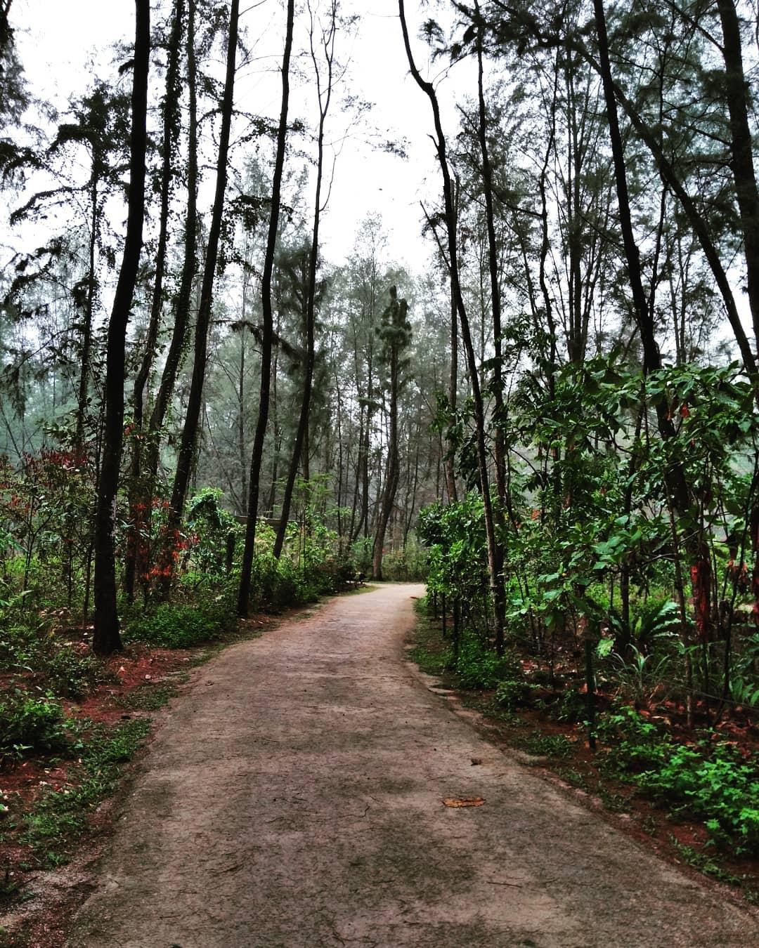 Coast-To-Coast Trail