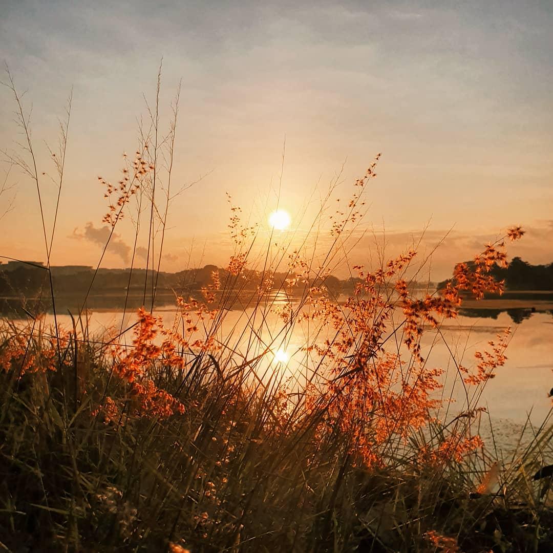 sunrise and sunset in singapore - lower seletar reservoir park