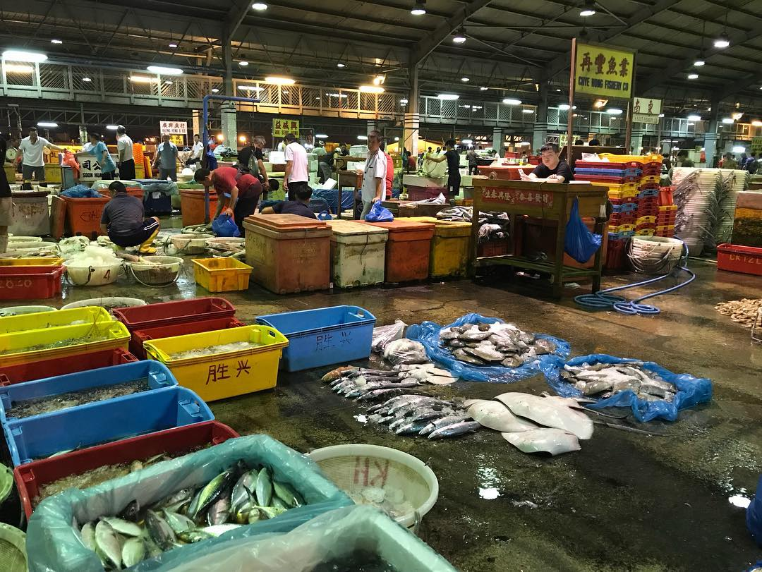 101 things to do in Singapore Senoko Jurong Fishery Port