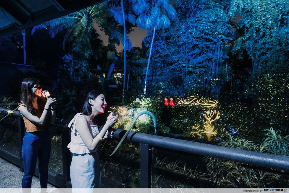 sing like an animal rainforest lumina