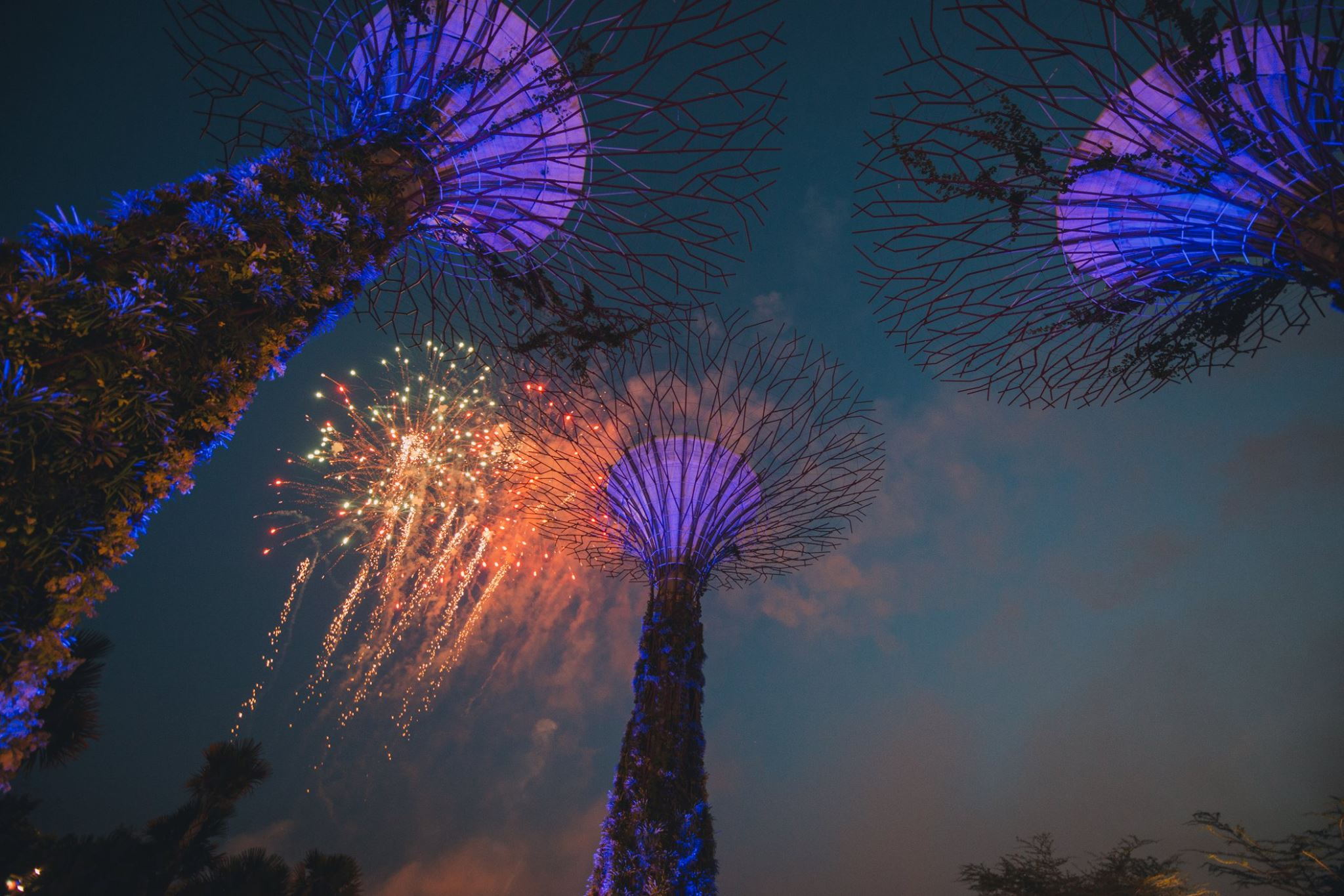 best fireworks viewing spots in singapore - gardens by the bay supertree grove