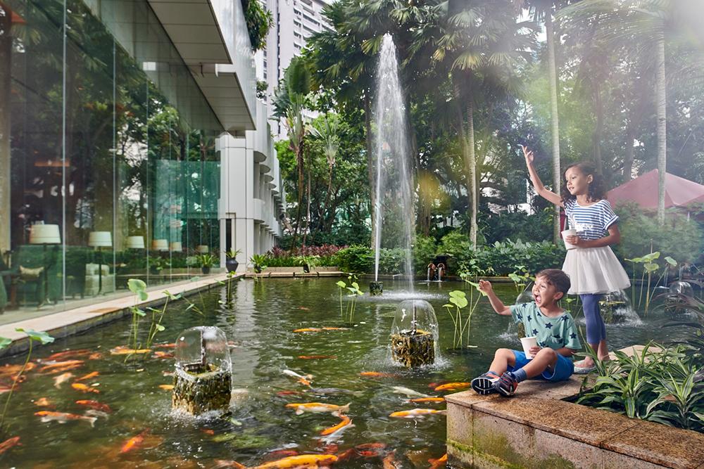 Kids Activities Fish Feeding Koi Pond Shangri-La Hotel Kuala Lumpur Malaysia