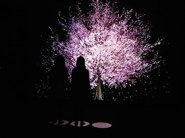 2219: Futures Imagined ArtScience