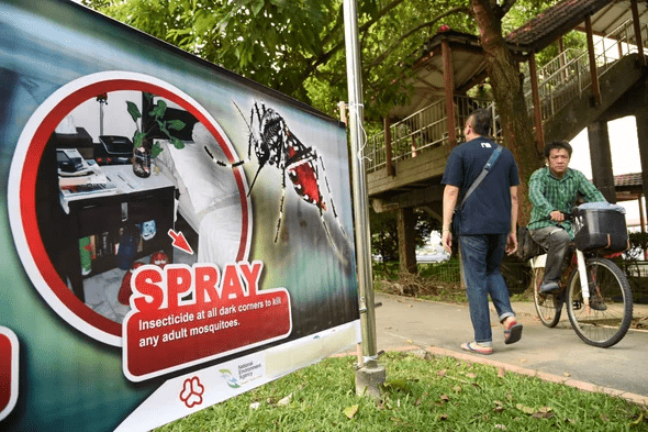 Mosquito Breeding Prevention Singapore