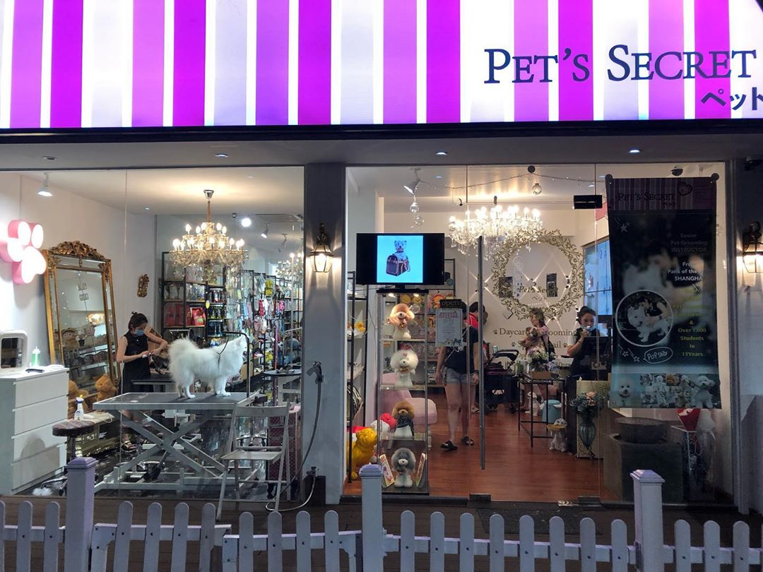 Pet grooming in Singapore - Pet's Secret