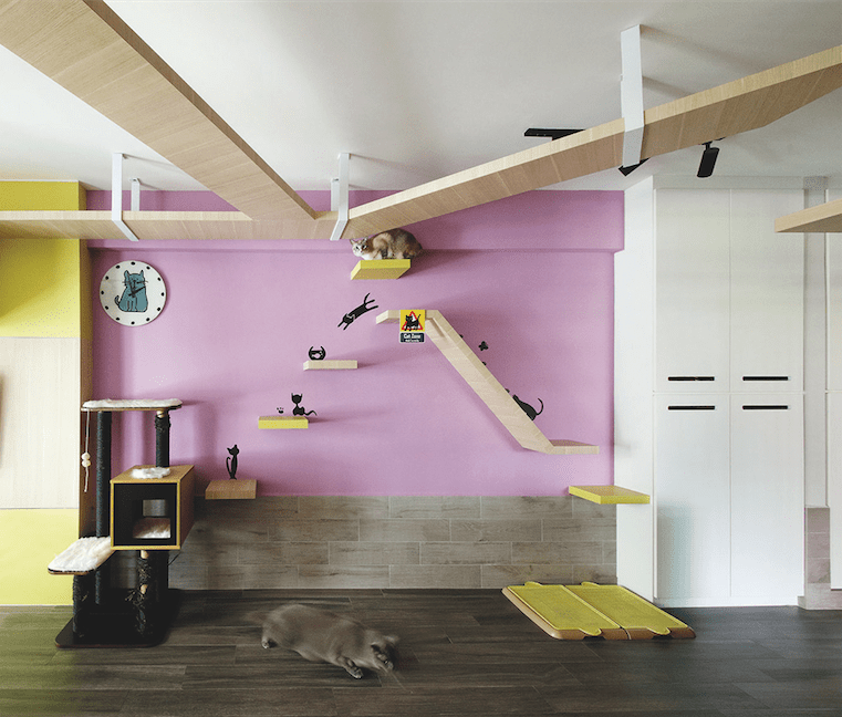 Cat lover's living room