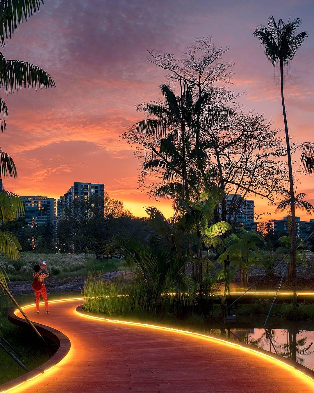 Jurong lake garden stargazing
