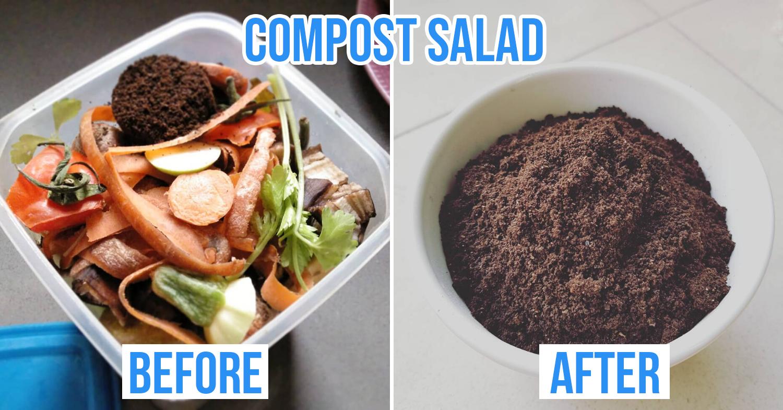 composting salad