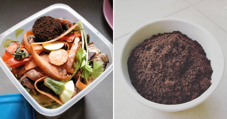 Composting expiring foods