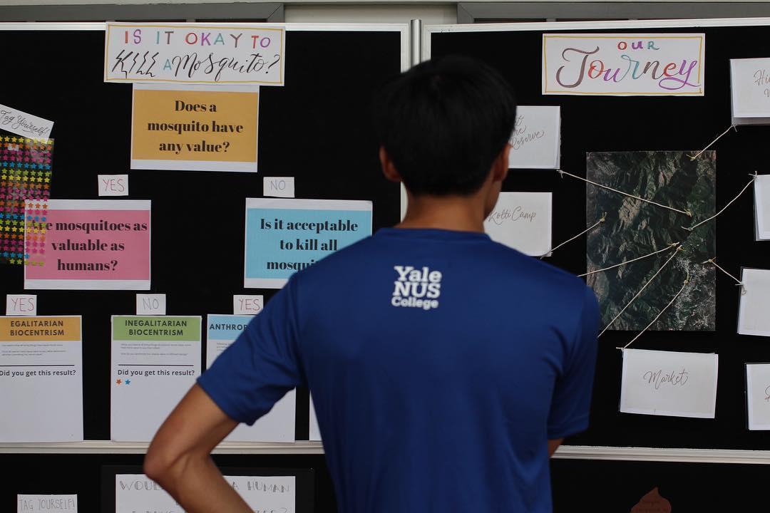 student deciding - University application FAQs & tips