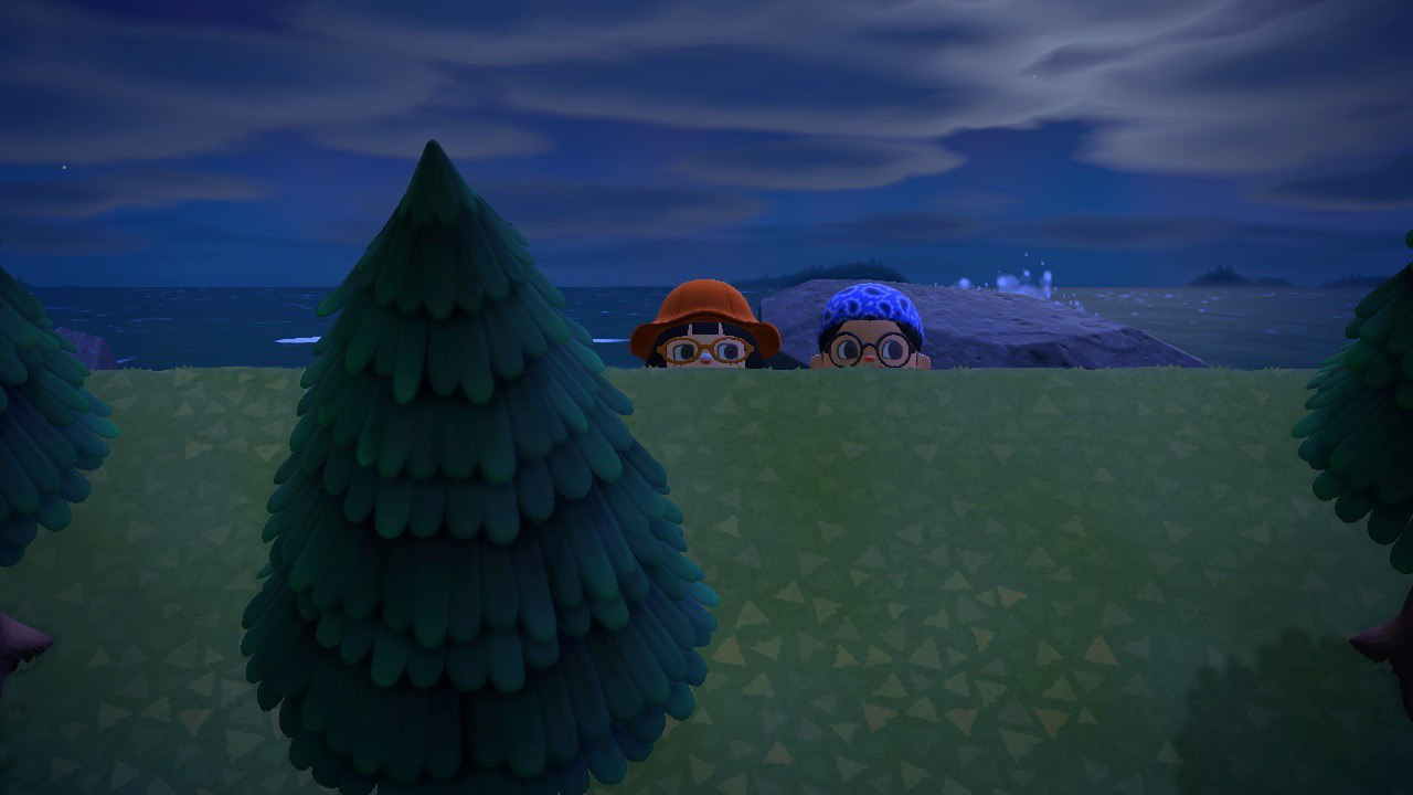 Dates on Animal Crossing