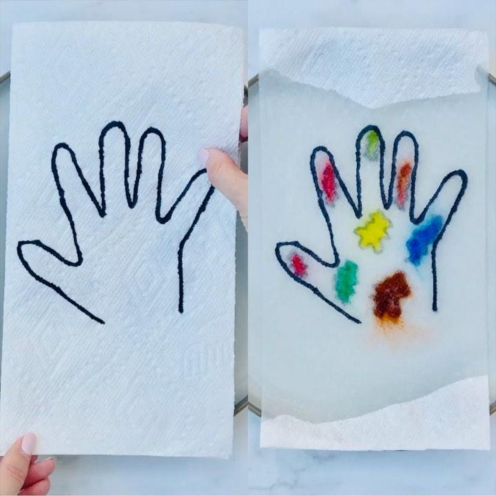 Paper towel germ experiment
