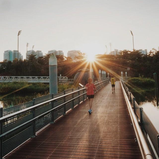 hidden parks singapore sengkang