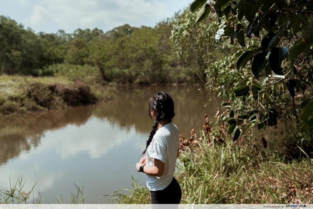hidden parks singapore tampines