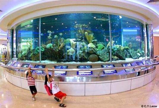 wisma atria aquarium