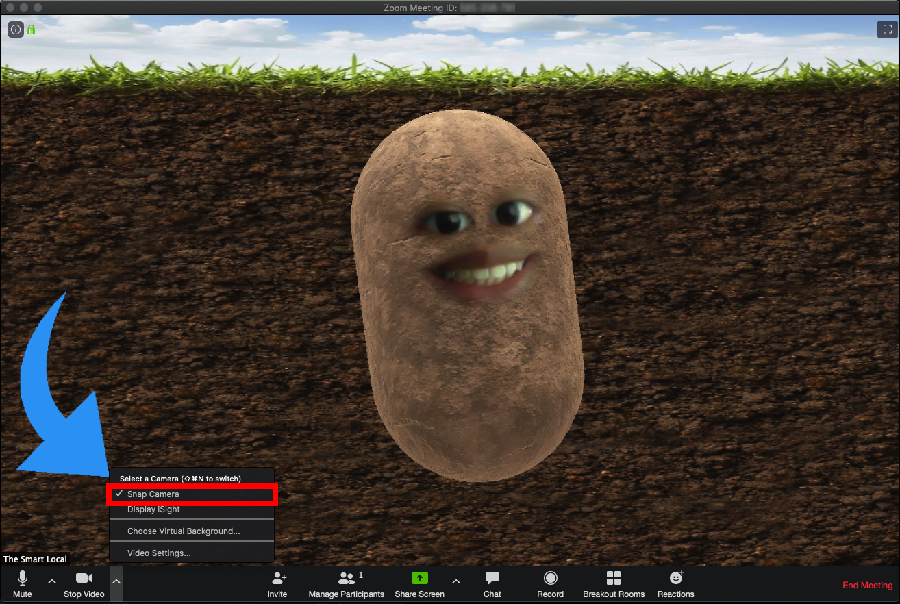 One of the most advanced Zoom hacks is turning into a potato.