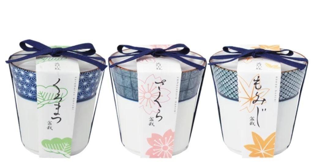 bonsai packaging