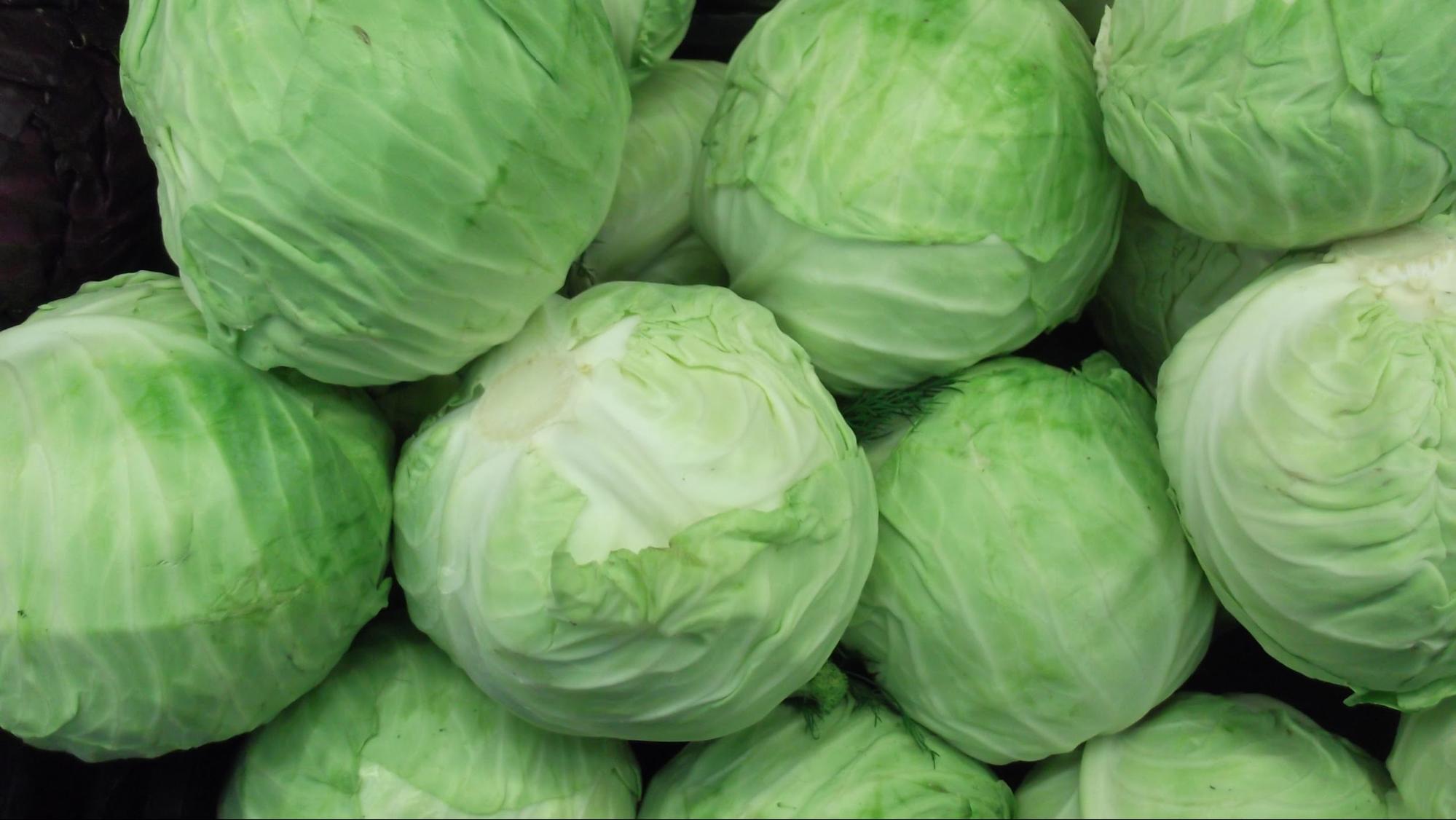 cabbage - longest lasting vegetables