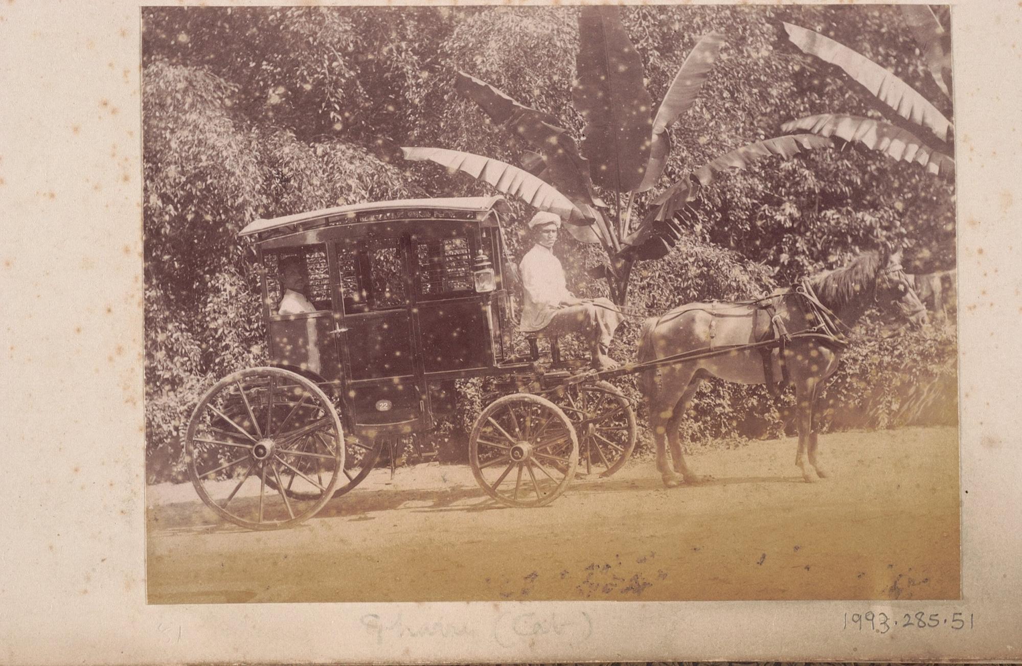 horse carriage singapore