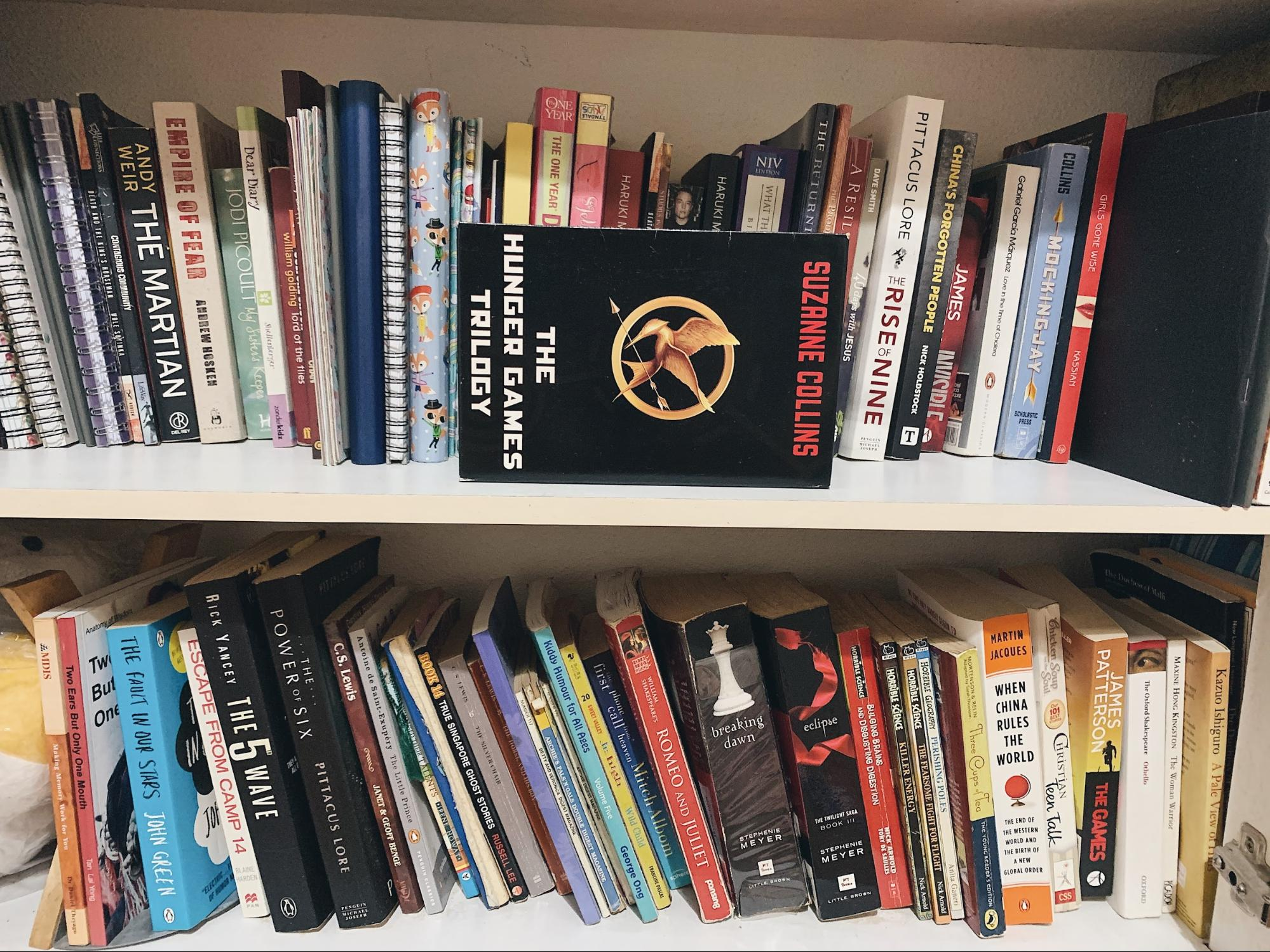 book collection on shelves