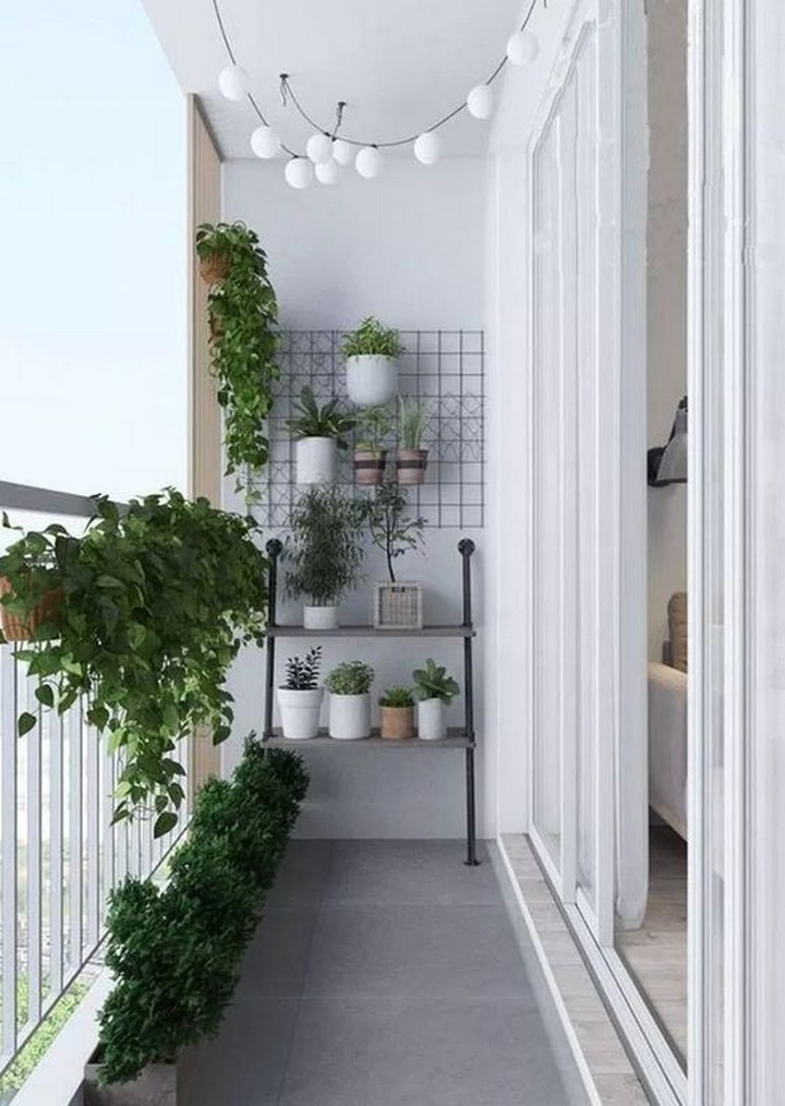 small balcony ideas singapore - trellises, wall-mounted pots and handrail-mounted planters are useful in keeping your garden neat and easy to clean.