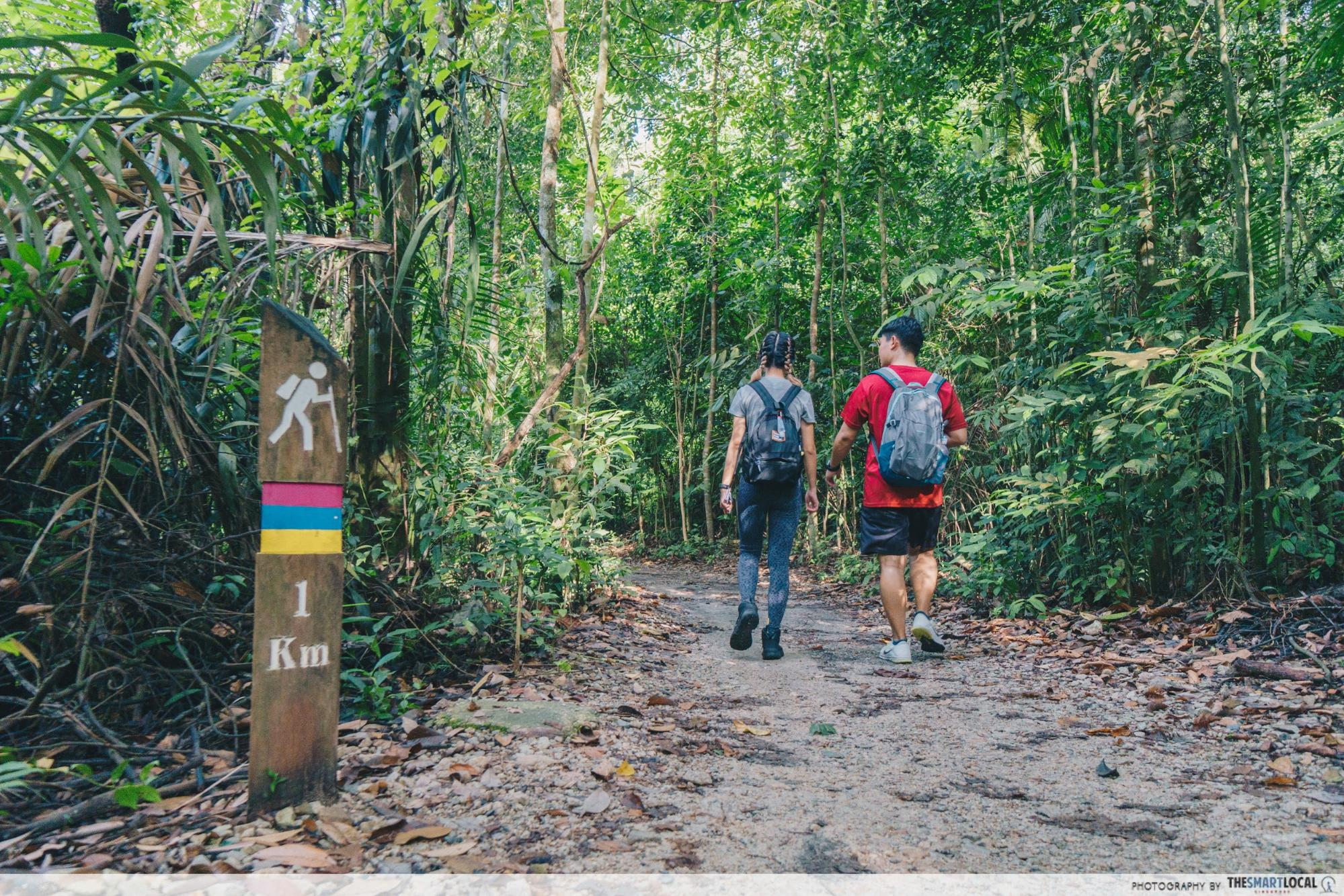 MacRitchie - Trail markers