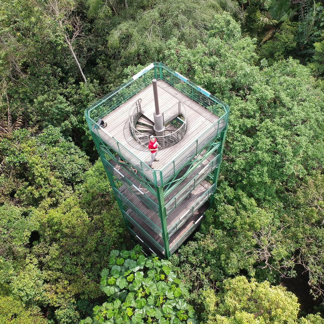 Jelutong Tower