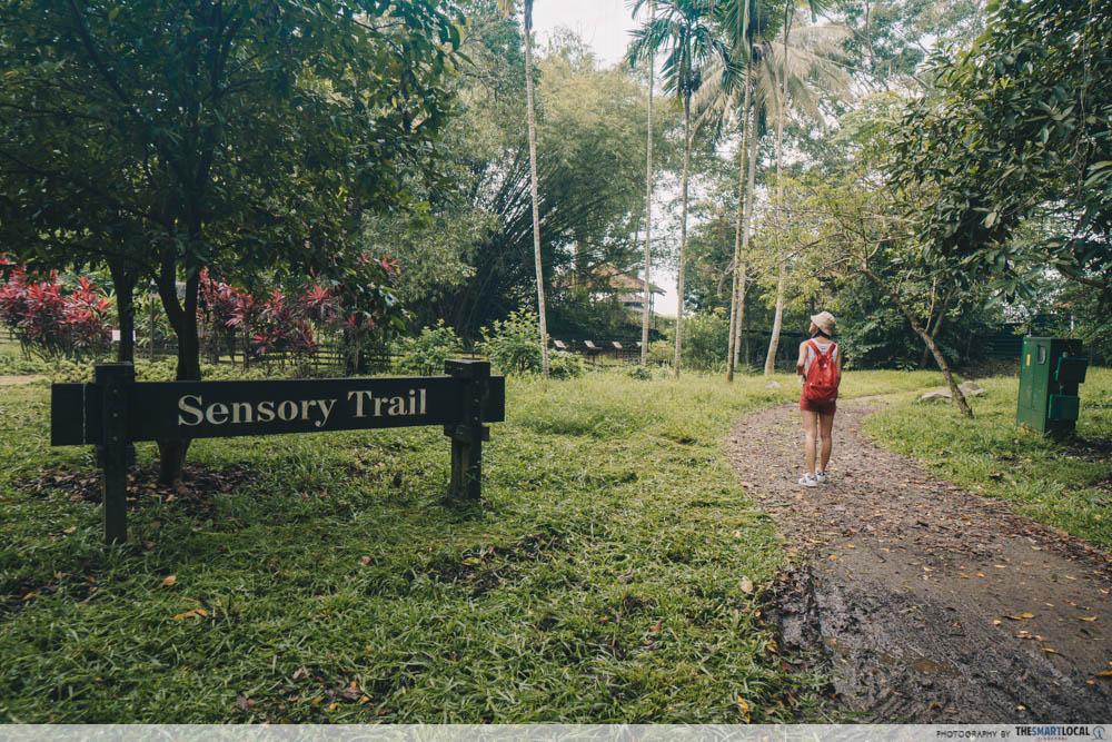 Pulau ubin guide - Sensory Trail garden