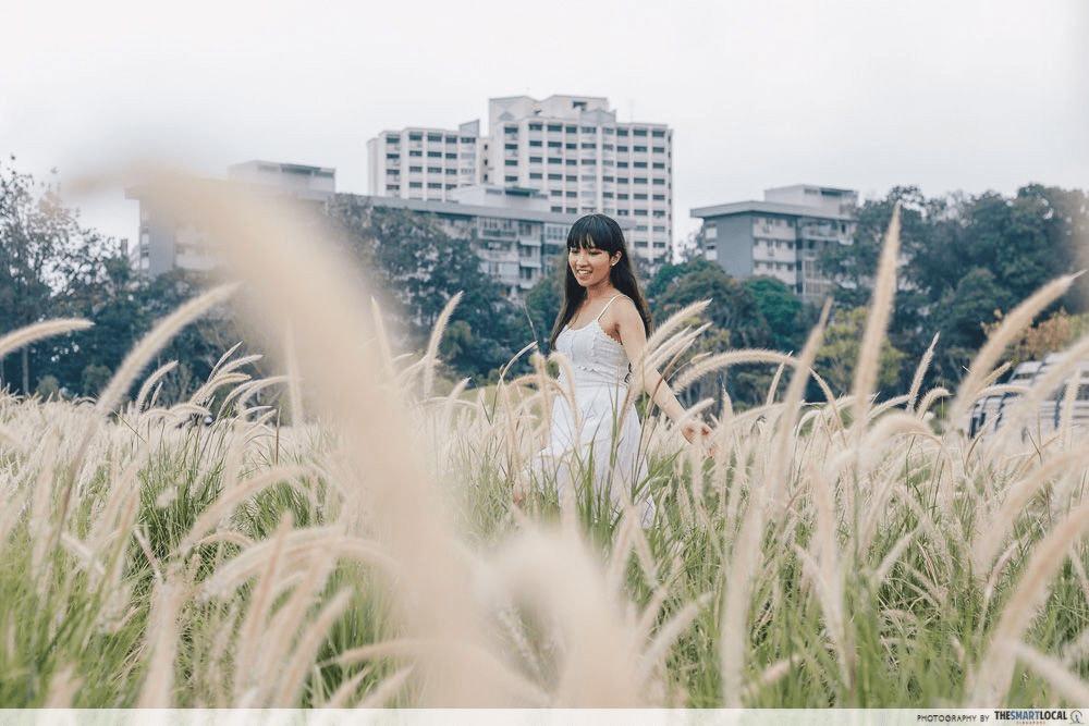 Singapore Road Trip Ideas - Jurong Lake Gardens Lakeside Lalang Field