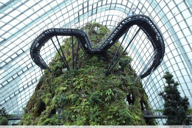 Gardens by the Bay: unlimited Cloud Forest and Flower Dome visits for the price of one ticket.