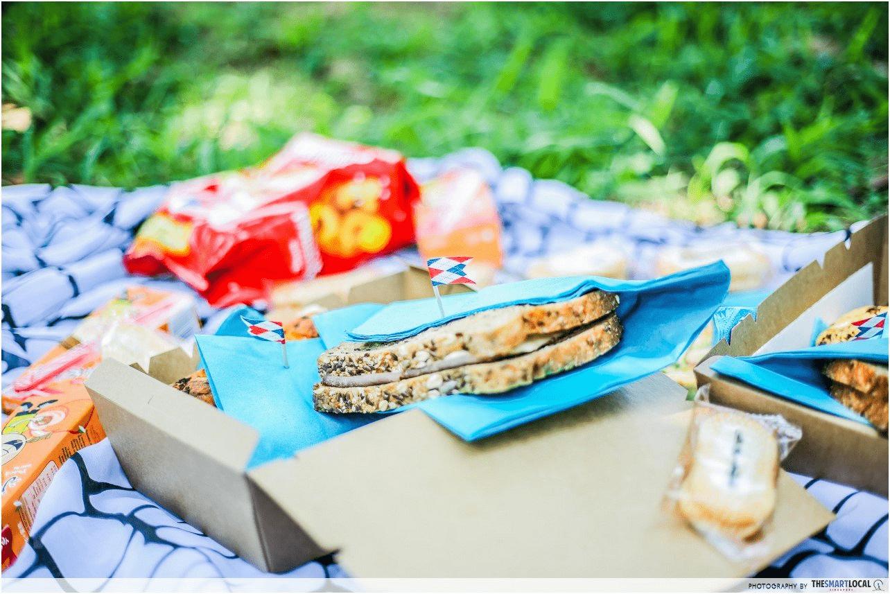picnic at st. john's island