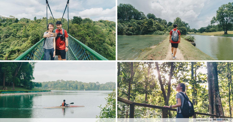 SingapoRediscovers - MacRitchie Reservoir Park