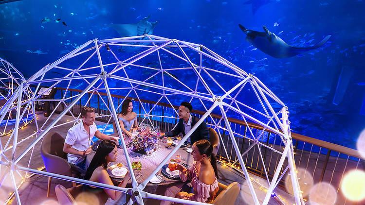 SEA Aquarium - bubble pod dining