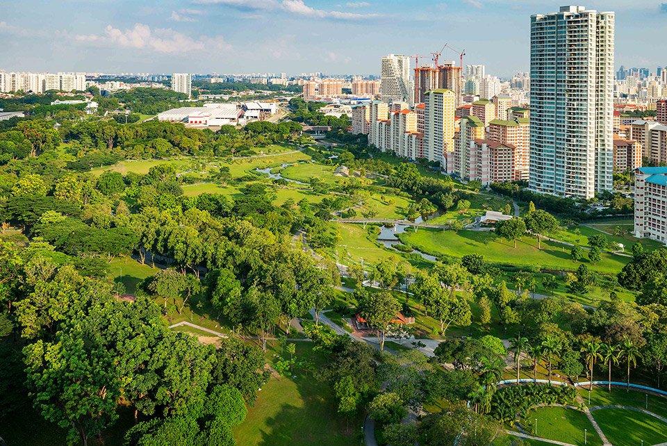 greenery in singapore