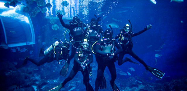 RWS open water diver's course