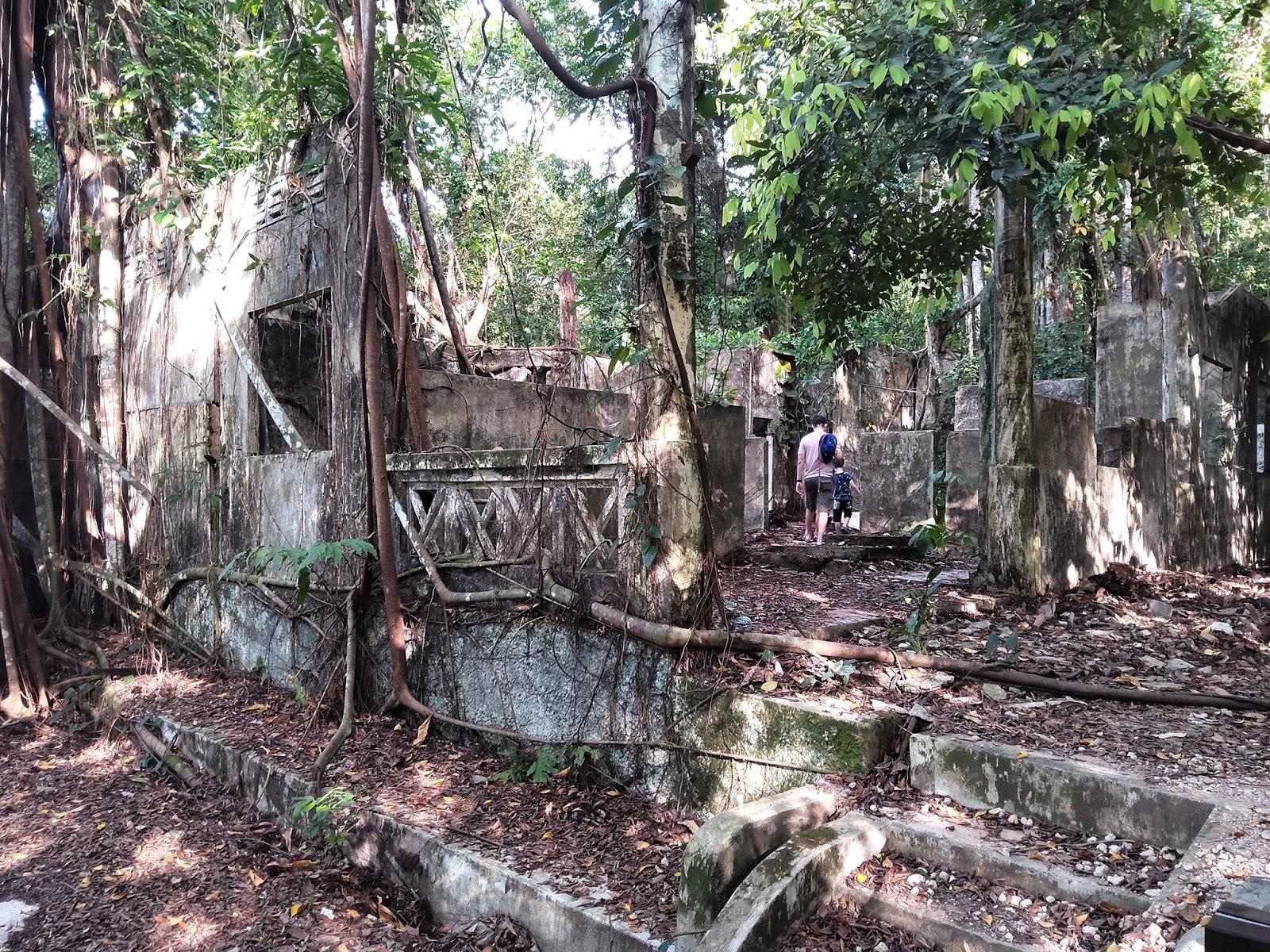 hainan village ruins, thomson nature park